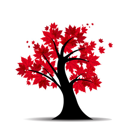 Vector illustration of a maple tree silhouette