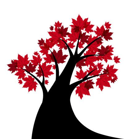 Vektor-Illustration von einem Ahornbaum Silhouette