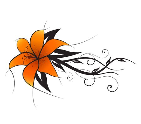 Vector illustration of orange lilies, vintage decoration flowers
