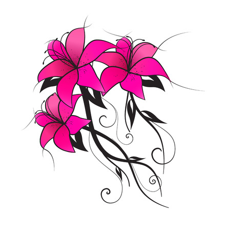 graphic pattern: Vector illustration of pink lilies, vintage decoration flowers Illustration