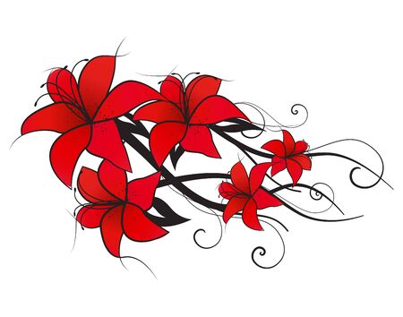 white lilly: Vector illustration of red lilies, vintage decoration flowers