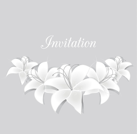 lily flowers: romantic floral background with White lilies