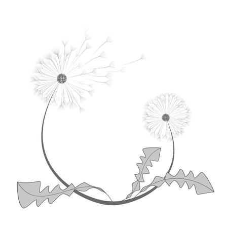 sky: Vector dandelion flower Illustration