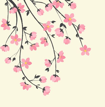 cherry blossoms: Branches with flowers Illustration