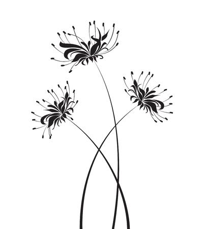 Vector Flower higanbana