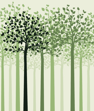 Trees with leaves