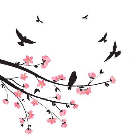 romance: Spring sakura blossom