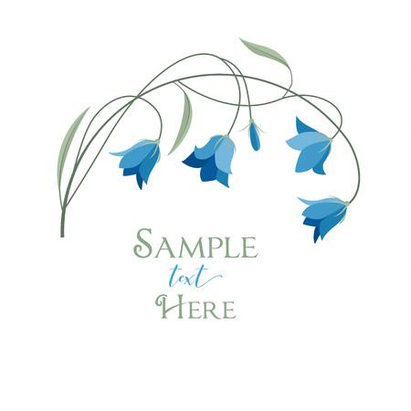 Summer flower campanula Illustration