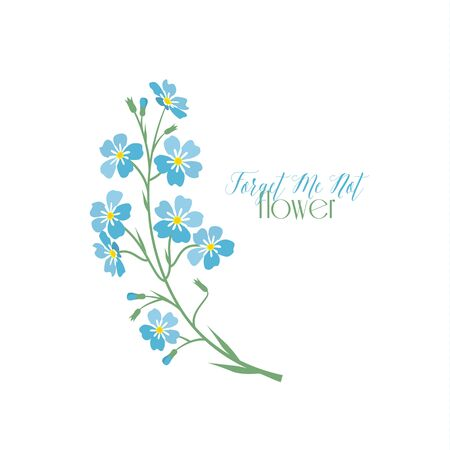 holiday background: Vector blue forget me not flowers