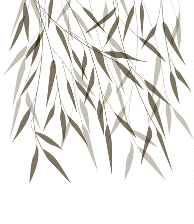 tree isolated: Vector bamboo leaves