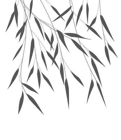 traditional culture: Vector bamboo leaves