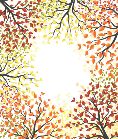 Autumn multicolored forest