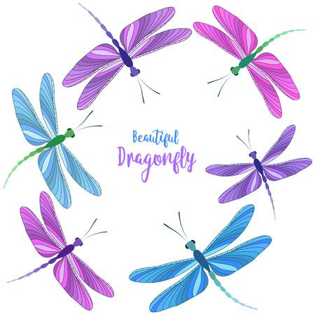 Dragonflies in flight Illusztráció