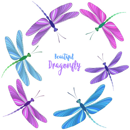 Dragonflies in flight Illustration