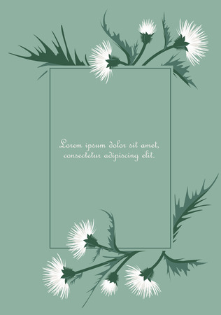 Vector Illustration of thistle with leaves. Floral background. Иллюстрация