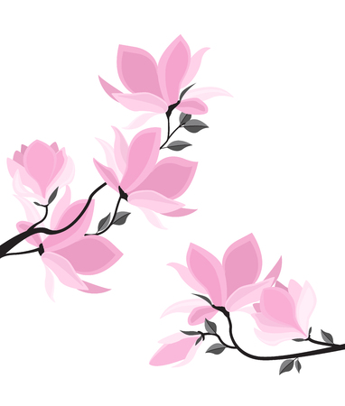 Branches with floral decoration vector illustration. Spring magnolia background with pink flowers. 일러스트
