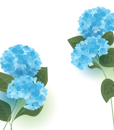 Vector illustration of hydrangea flower Background with blue flowers Stock Illustratie