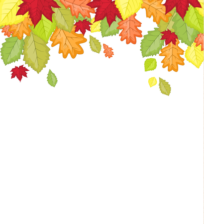 Vector illustration of autumn leaf in colors. Background of natural leaves