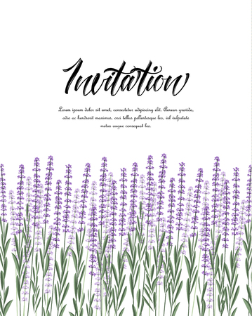 Vector illustration Natural background with purple lavender