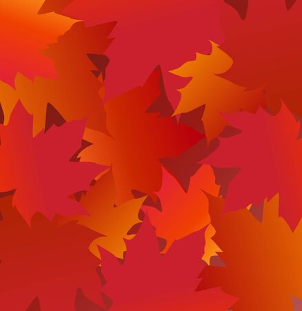 Vector illustration of maple leaves. Frame with red leaf on white background