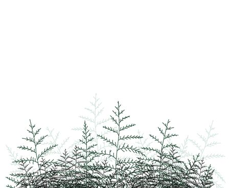 Vector illustration of bracken. Natural background, invitation card template with branches, leaf decoration.