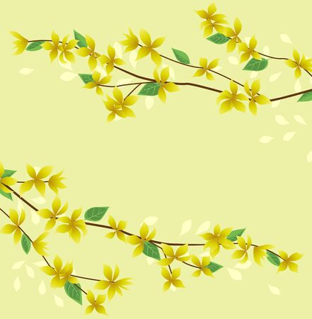 Vector illustration of Forsythia flower from tree. Spring landscape, nature background. Decoration yellow flowers card Happy Easter. Golden Rain