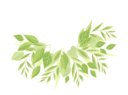 Vector illustration background with green leaves. Nature background with place for text
