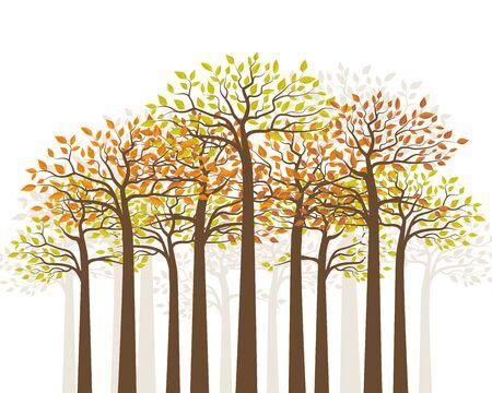 Illustration vectorielle de forêt d'automne. Arbres aux feuilles colorées. Fond naturel