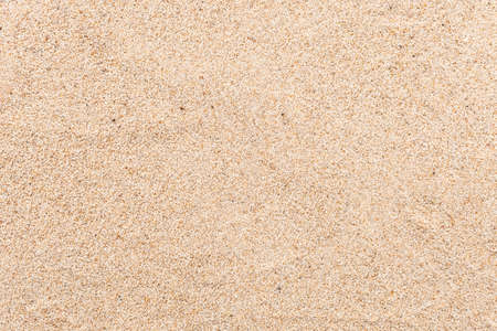 Background grains of sea sand, fine beach sand and shells.