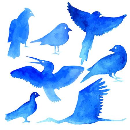 blue heron: watercolor bird set in blue color