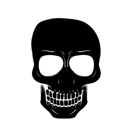 An illustration of human skull isolated on white background.