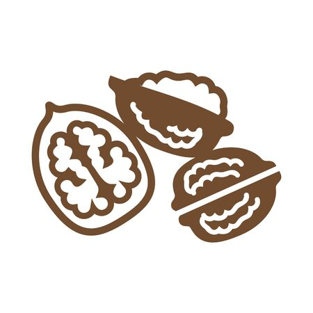 Greek walnuts isolated on white background. Vector realistic autumn season nut Archivio Fotografico - 138000184