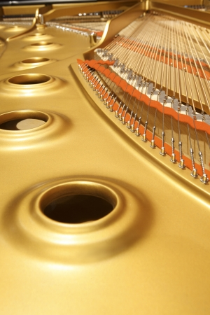 tuning: interior of an expensive and high professional piano