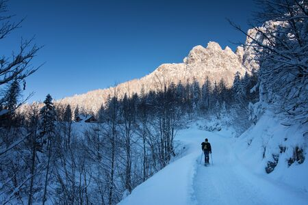 A trekker snowshoeing in the soft alpine snow. Stock Photo