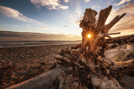 A stranded log on the shore turns the setting into a golden star.