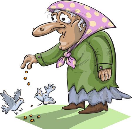 Vieux pigeons dame d'alimentation, vecteur, isolé sur blanc Banque d'images - 49869839