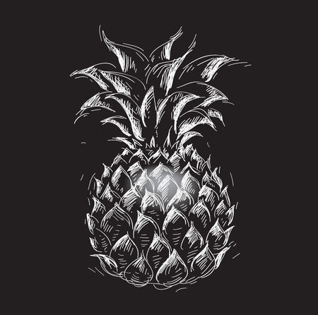 pineapple in a prints style on black, illustration, sketch Illustration