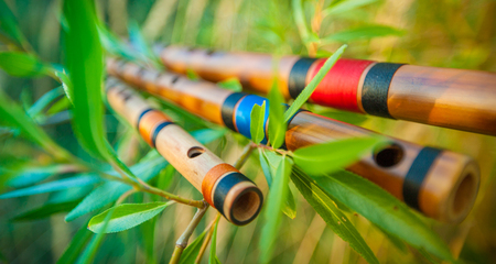 Three colourful bamboo flutes placed on tree branches with young green leaves.