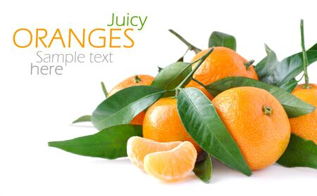 Juicy oranges isolated on white background and sample text photo