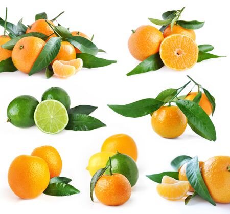 Set of juicy organic oranges and lime isolated on white background photo