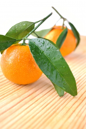 Two tangerines with water drops on wooden table