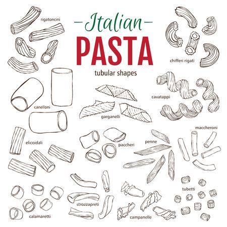 tubular: Set of hand drawn Italian pasta tubular shapes. Hand drawn vector illustration. Sketch style Illustration