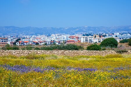 View of the town of Paphos and blooming spring meadow from the Cyprus Archaeological park at Kato Paphos, Cyprus Stock Photo