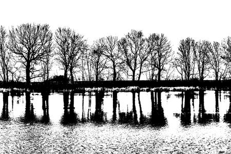 reflectetd - black and white Фото со стока