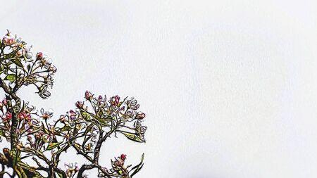isolate: tree blossom illustration