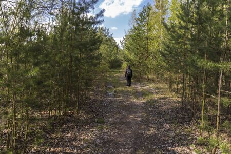 a woman walking on a forest path Standard-Bild - 146025615