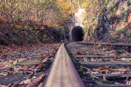 disused railway line in autumn forest Standard-Bild