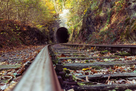 disused railway line in autumn forest Standard-Bild - 158995418