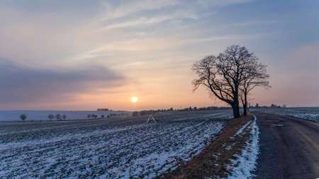 beauty in the nature, winter landscape