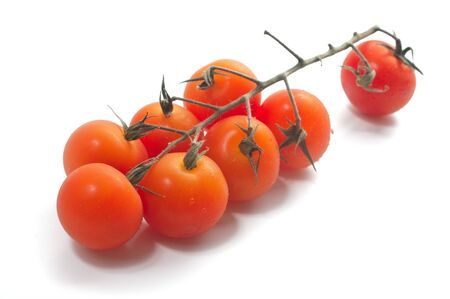 Cherry tomatoes on vine with water drops. Isolated photo